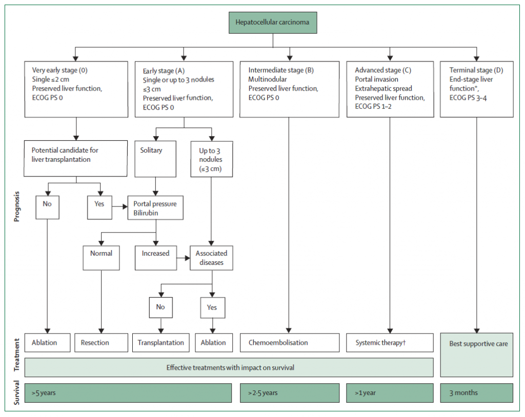 BCLC Staging Diagram for Primary Liver Cancer